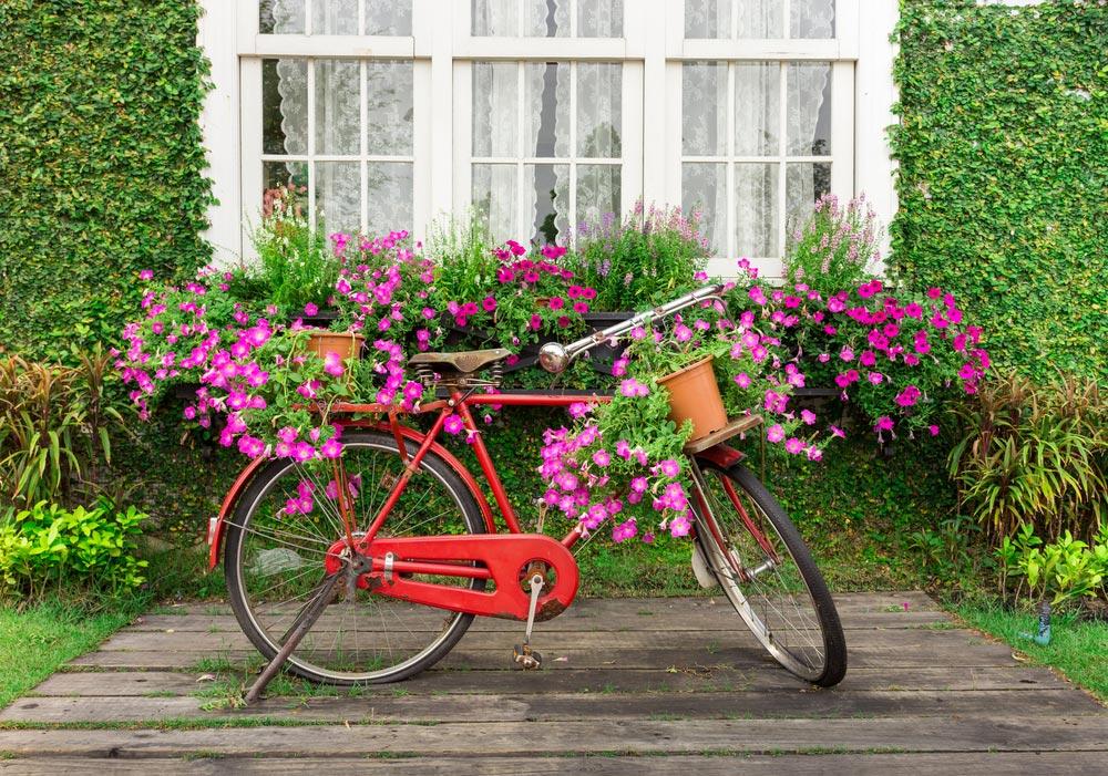 Suport de ghivece bicicleta